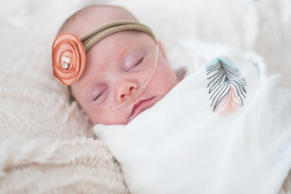 Daul Newborn-2.jpg