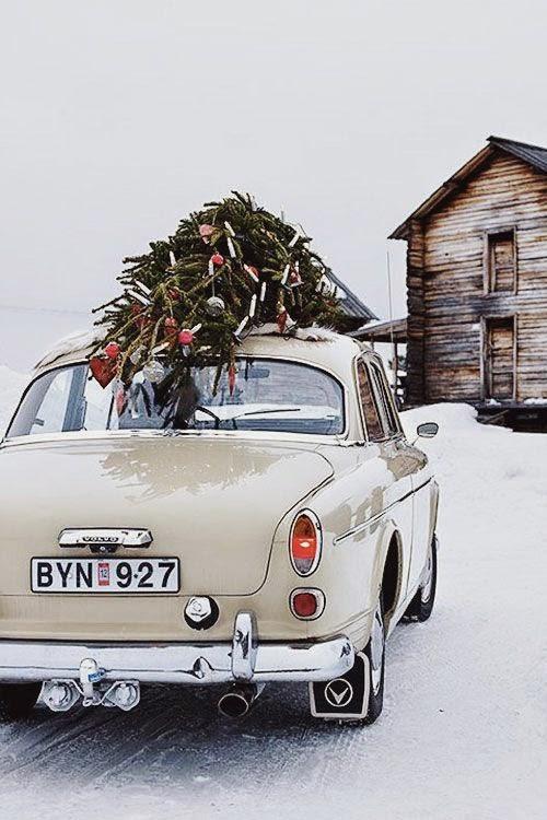 christmas winter snow card