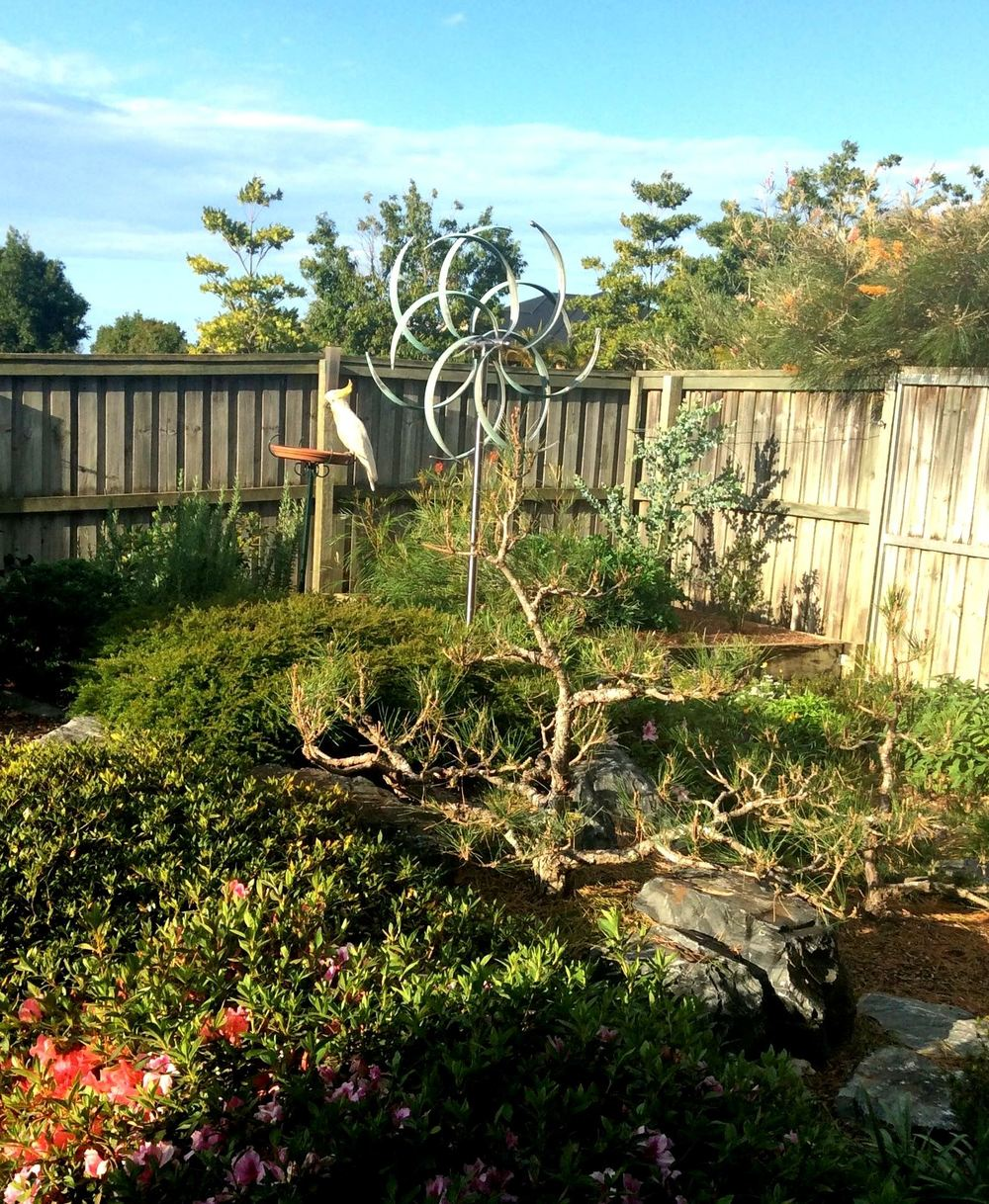 """As you can see, on the day Jim took the pictures a sulphur-crested cockatoo was visiting the garden. We are delighted on a daily basis by your amazing work and proudly tell visitors of your wonderful studio in Santa Fe. Many thanks for sending the Trancer sculpture all the way to Australia!"" - Jim & Christine, Brisbane, Australia"