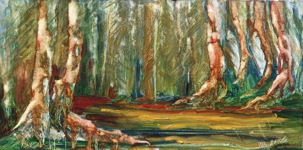 Spruce Pathway