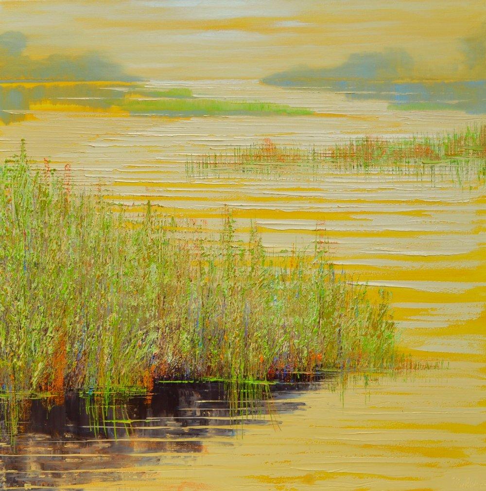 Yellow Marshlands