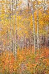 Walk Among the Aspens - Higginbotham takes us up into the mountains for a fall treat in his Walk Among the Aspens. Known for their bright golden leaves in the fall, they are a sight that draws people into nature every year to feel the crisp coolness of the air and savor the soft crunch underfoot as they prepare for the coming of winter.