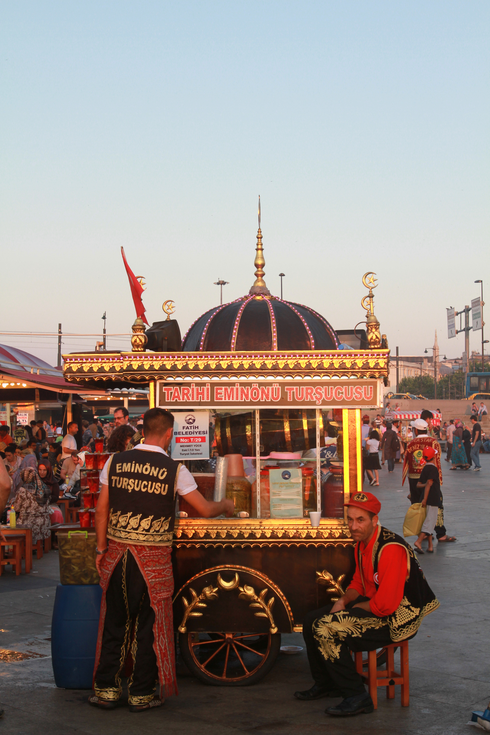 turkey-5423pol.jpg