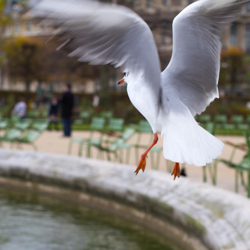 Paris 2014-312-2.jpg