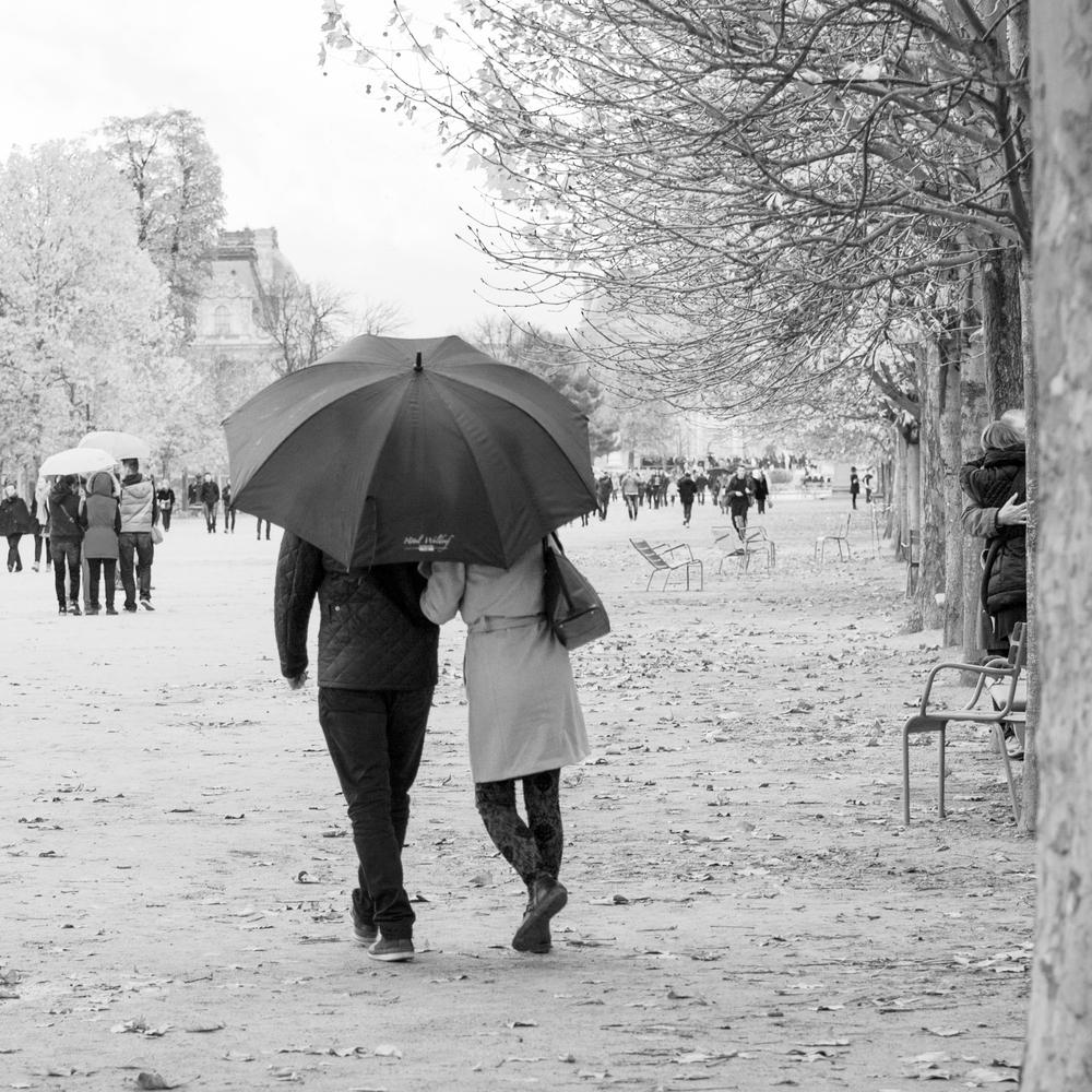 Paris 2014f-.jpg