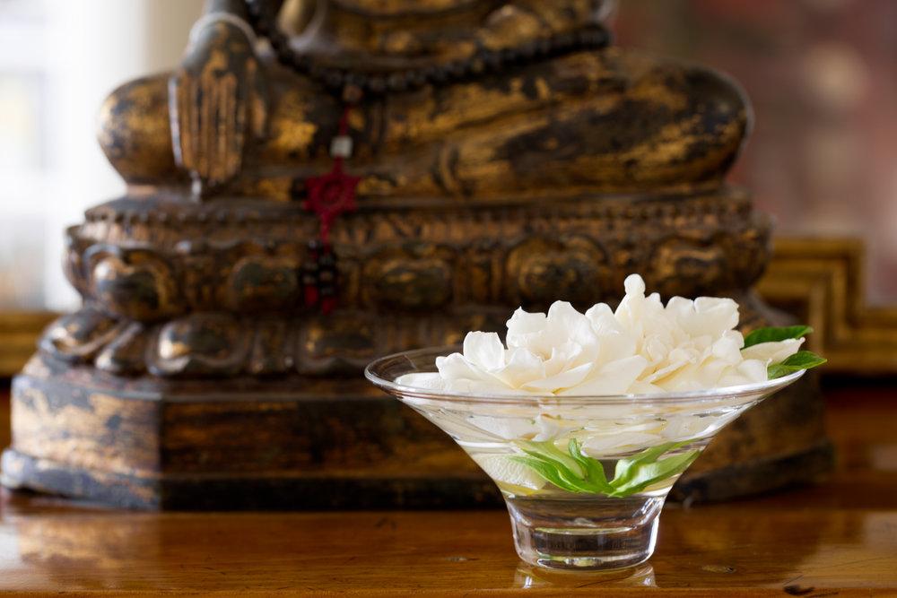 Gardenia & Bhudda--3.jpg