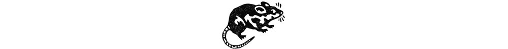 BCC_3_RAT.jpg