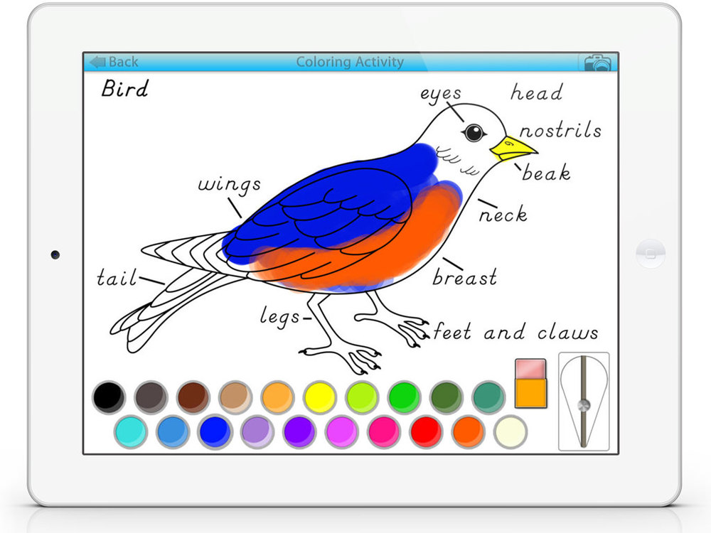 ColoringSC2.jpg