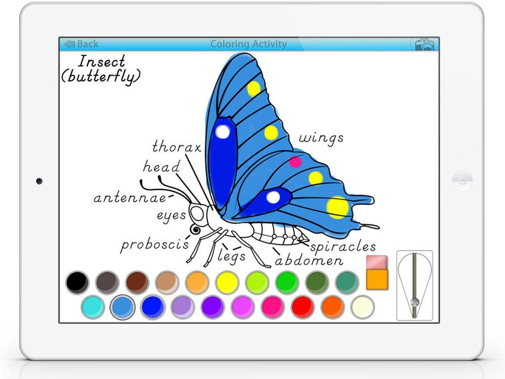 ColoringSC4.jpg