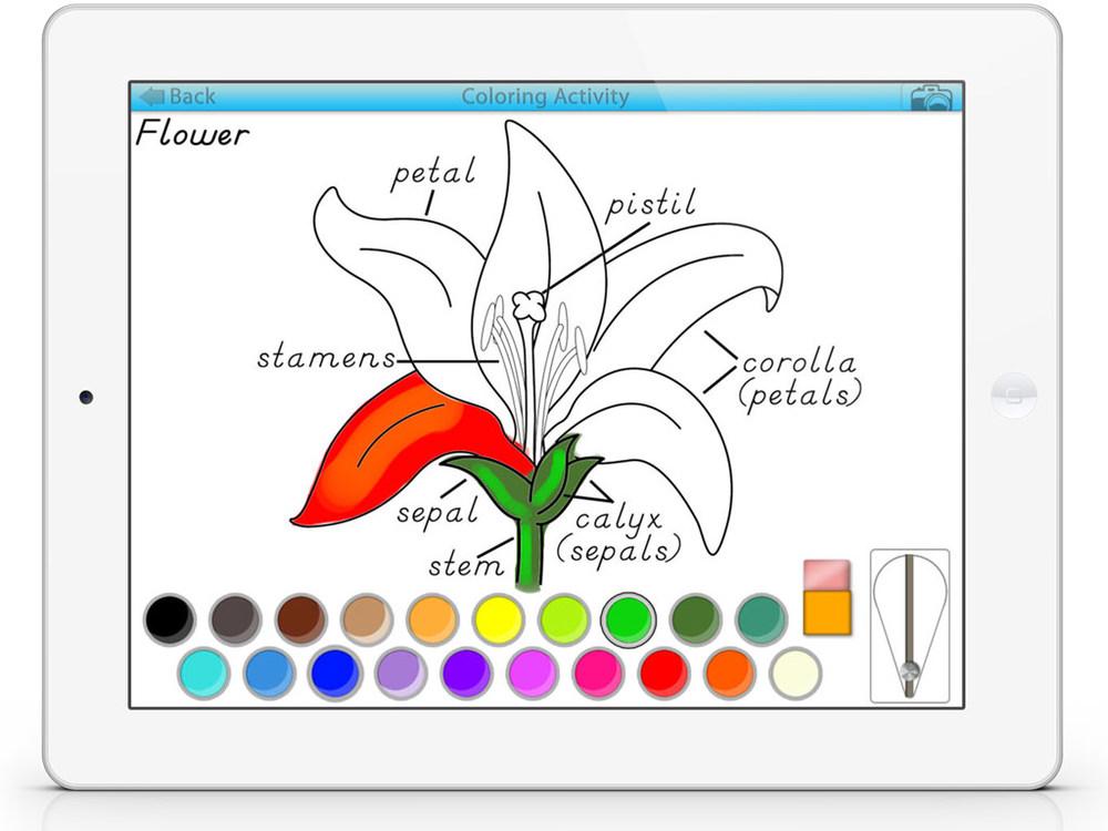 ColoringSC5.jpg