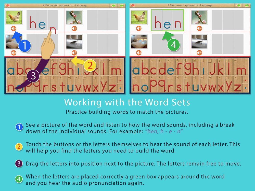 AlphabetAlphabet-reg.jpg