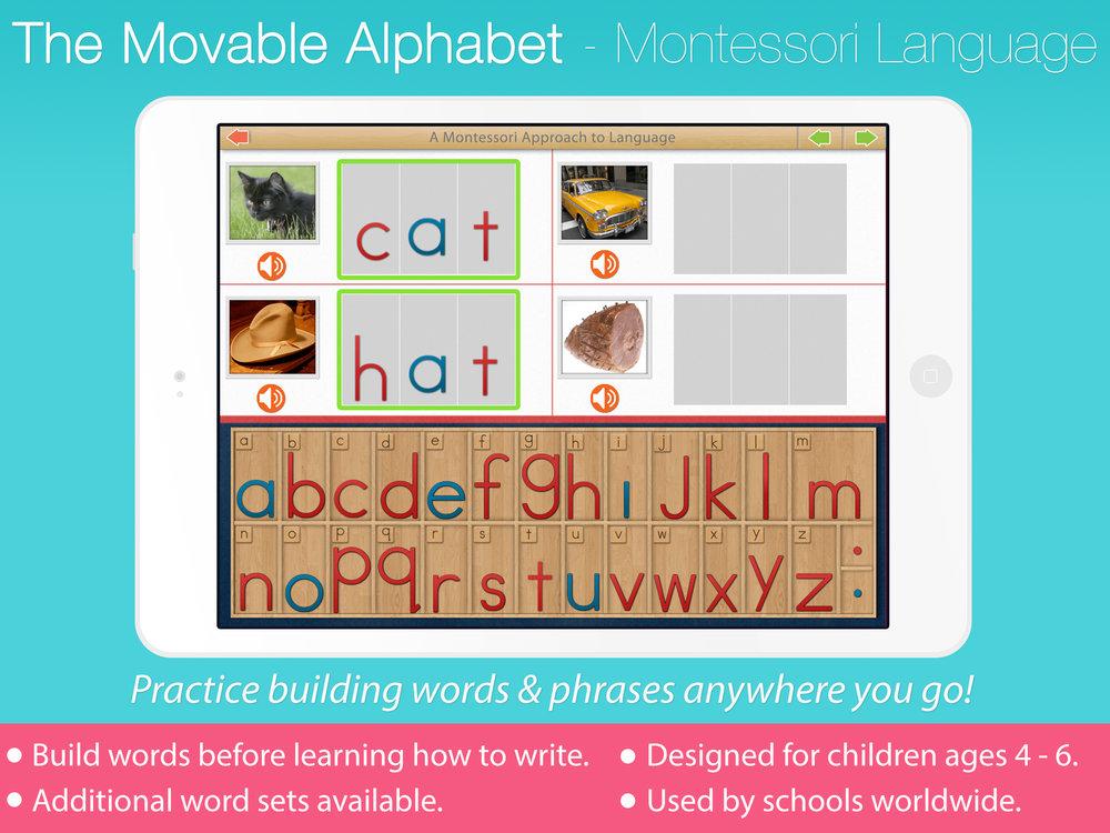 Alphabet-reg.jpg