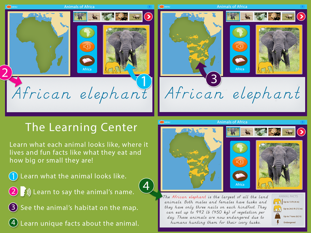 Animals_Of_Africa_Montessori_sc1.png