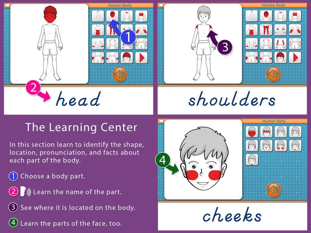 Parts Of The Human Body Mobile Montessori