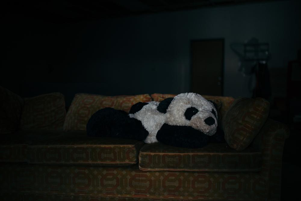 PANDA-websize-2.jpg