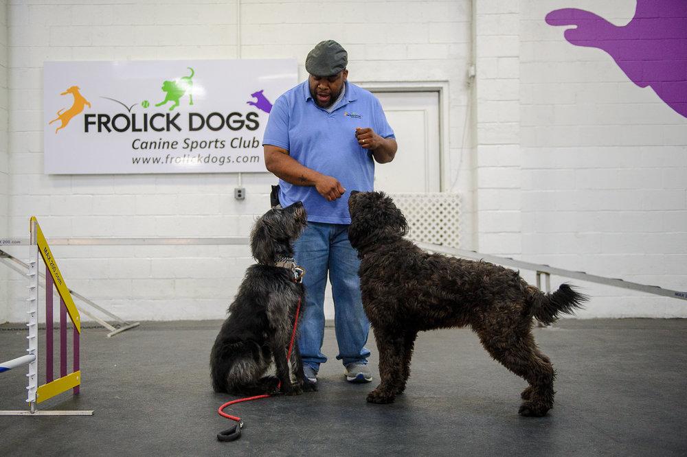 ALYPD Frolic Dogs-6226.jpg