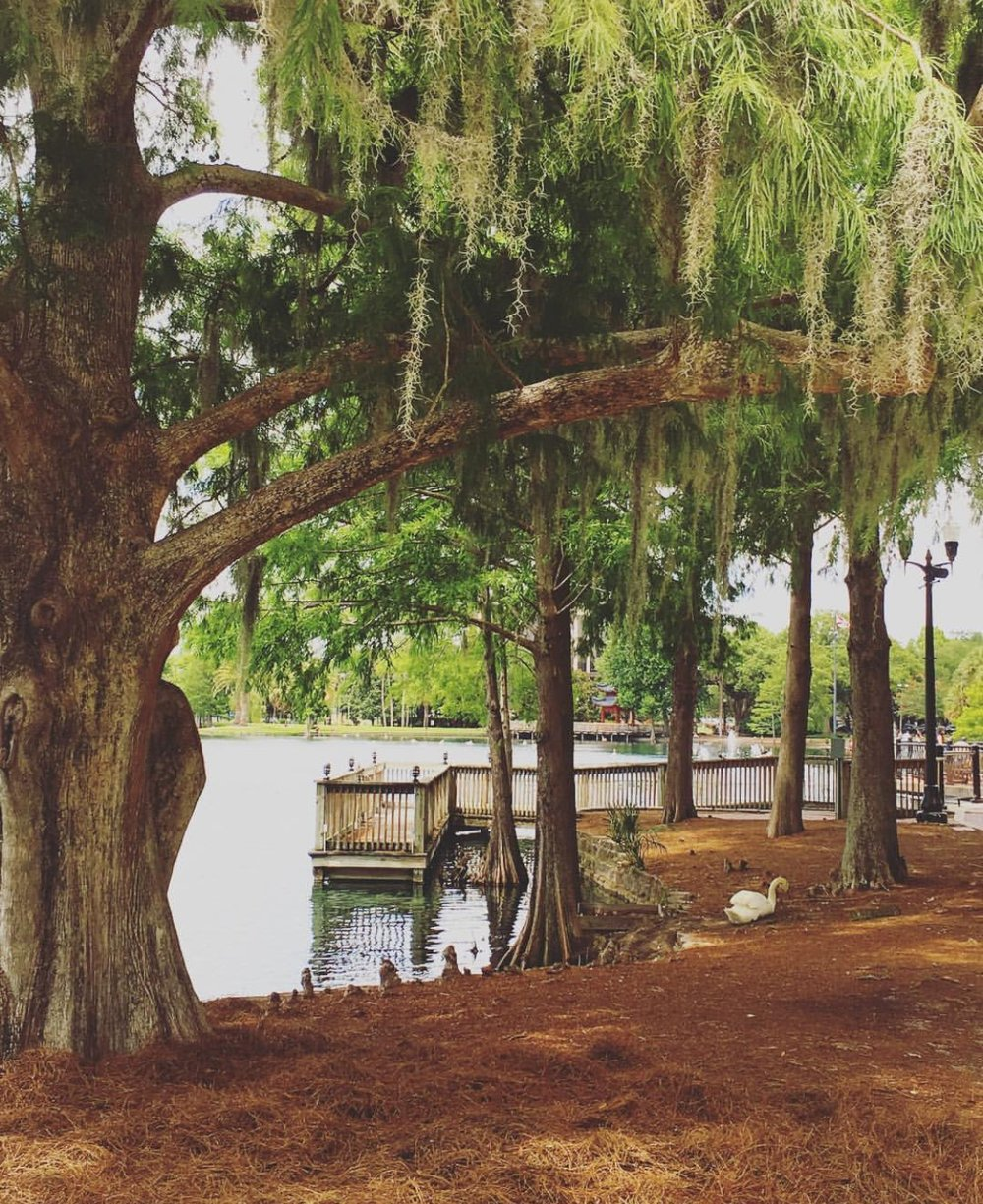 Parque natural Lake Eola em Downtown Orlando