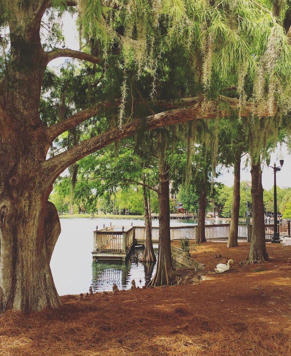 Parque natural Lake Eola em Downtown Orlando