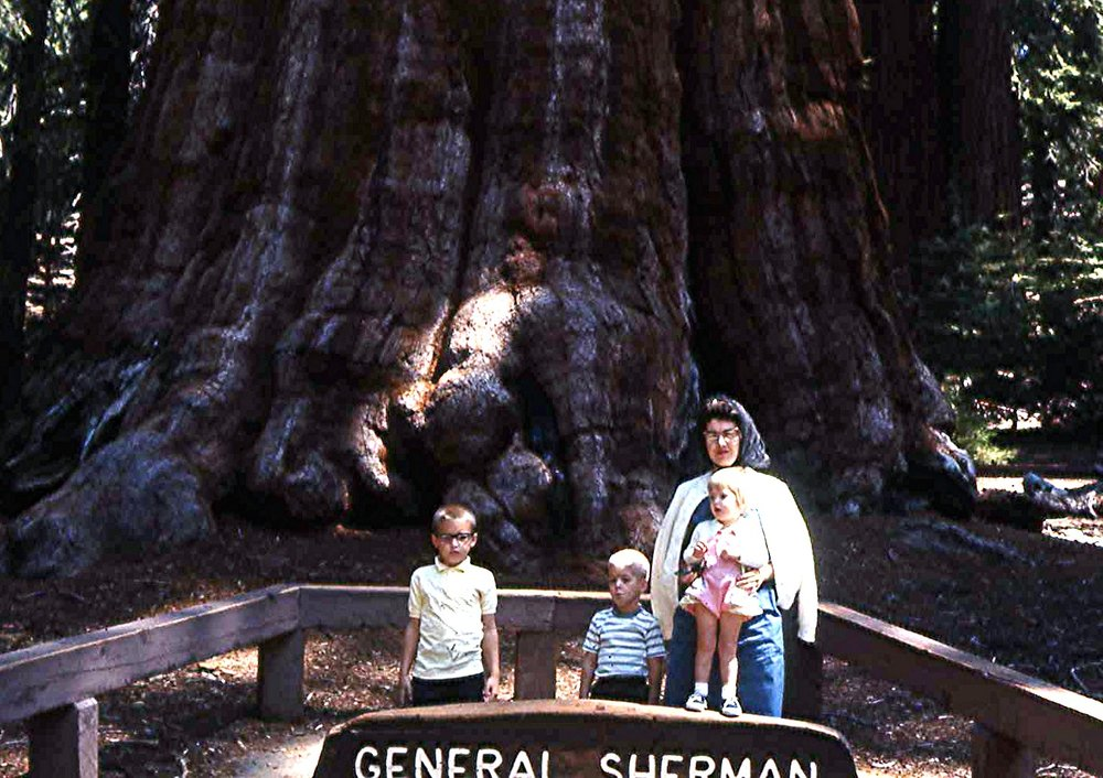 109-1966, Sequoia National Forest, Peggy with Matthew, Mark .jpg