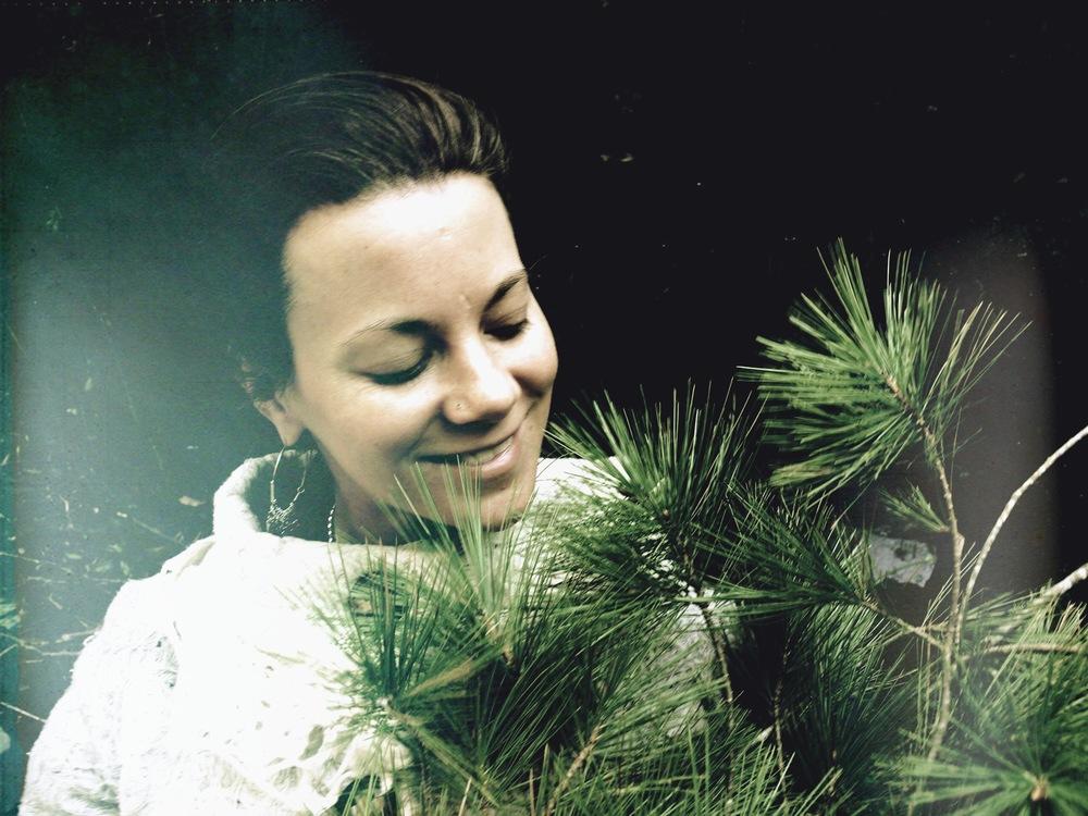 white pine alicia allison.jpg