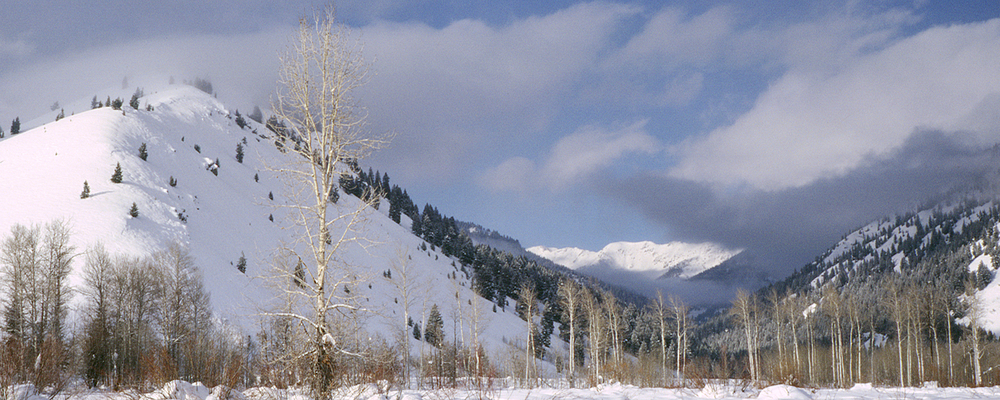 near Ketchum, Idaho