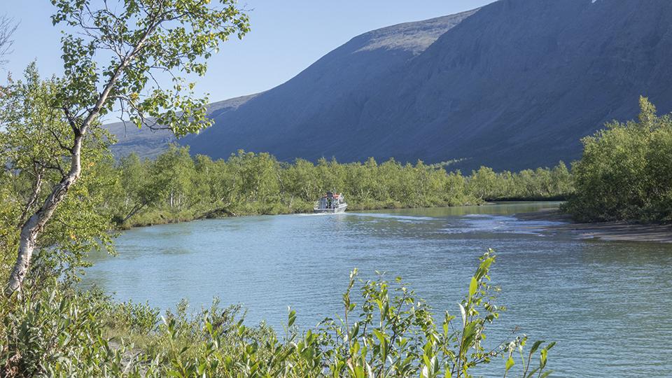 Laddujärvi