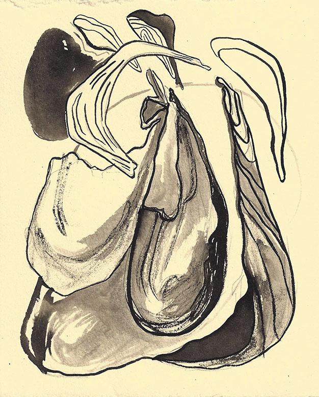 Shells 1.jpg
