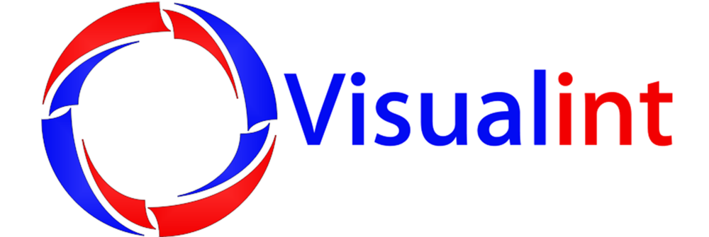 visualint png.png