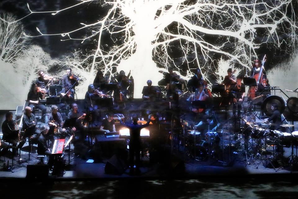 Live_Transmission-Joy-Division-Reworked-Sydney-Opera-House-7-®Prudence-Upton1.jpg