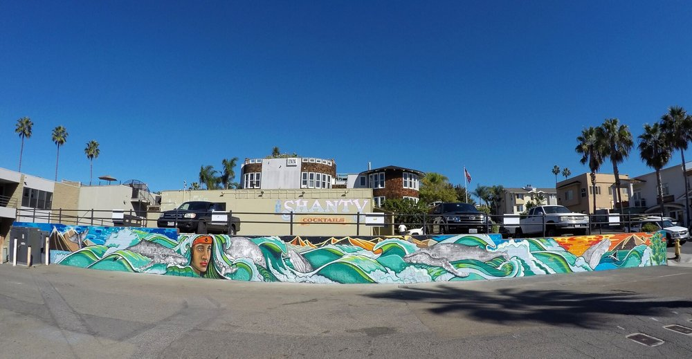 Mural Collaboration with Skye Walker for Cardiff, CA (Photo by Brad Smith)