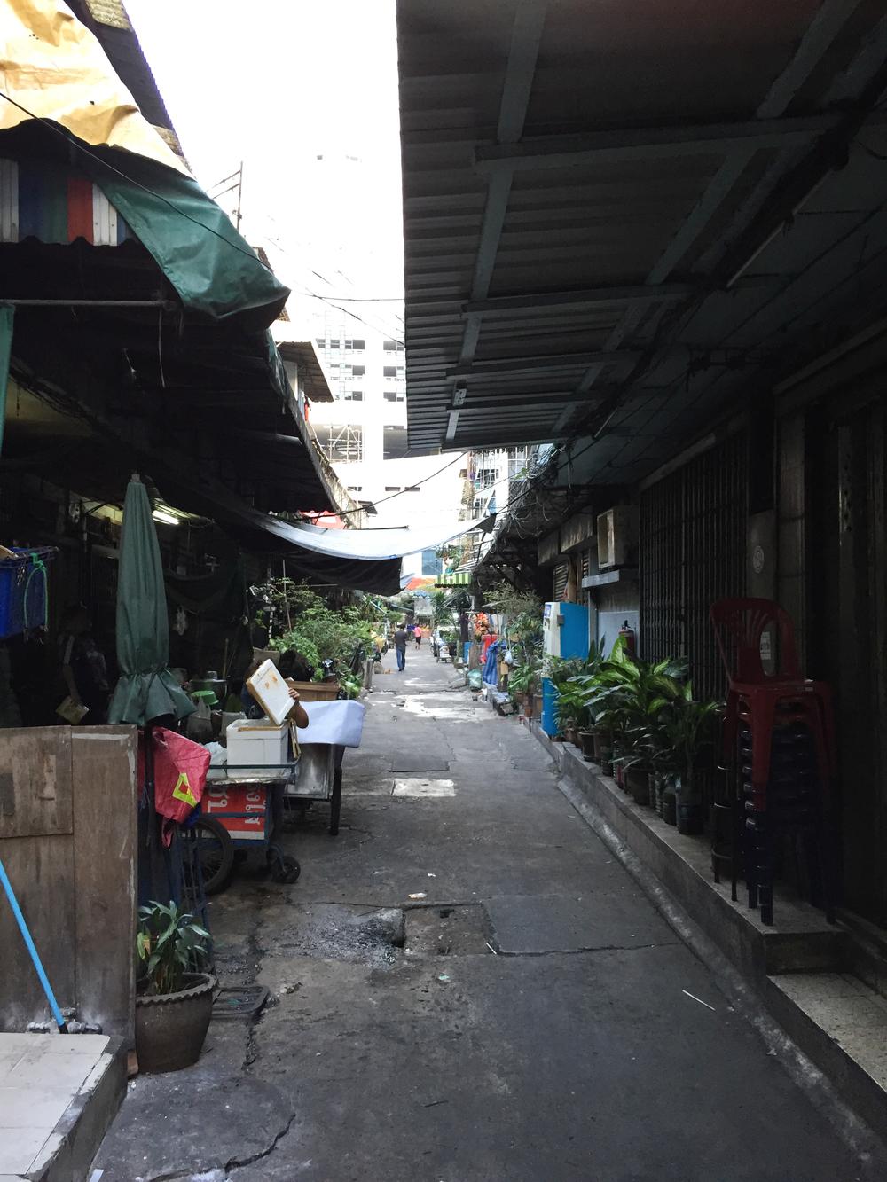 Thai0042.jpg