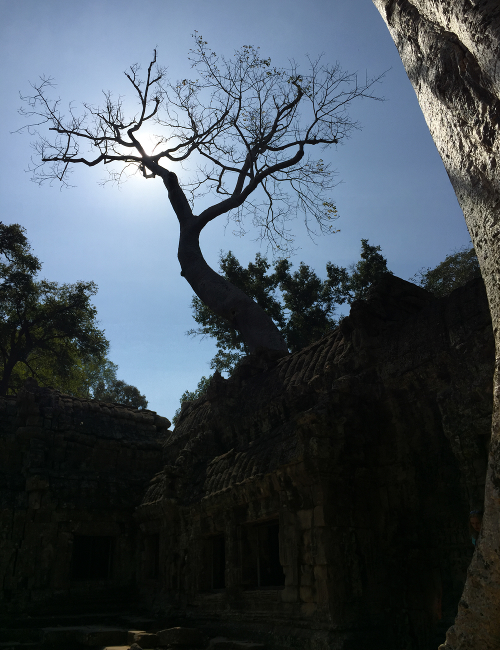 Thai0123.jpg