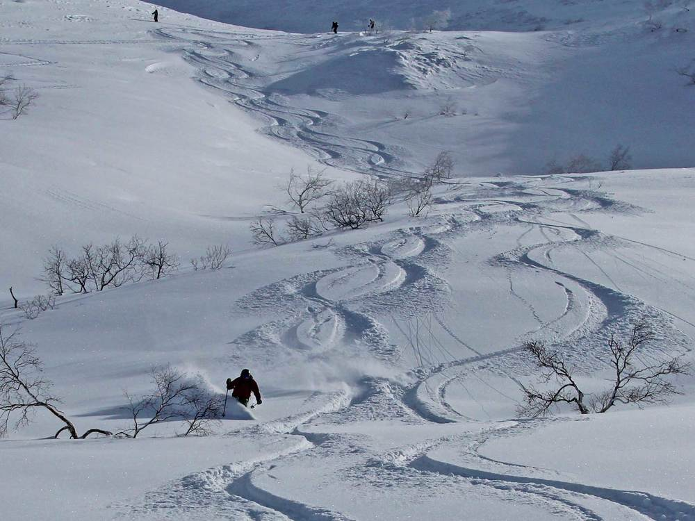 Sanpo Valley Powder Tracks, Tokachi Mountains