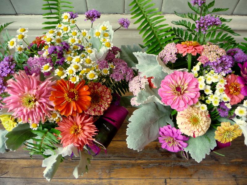 Larkspur Florals