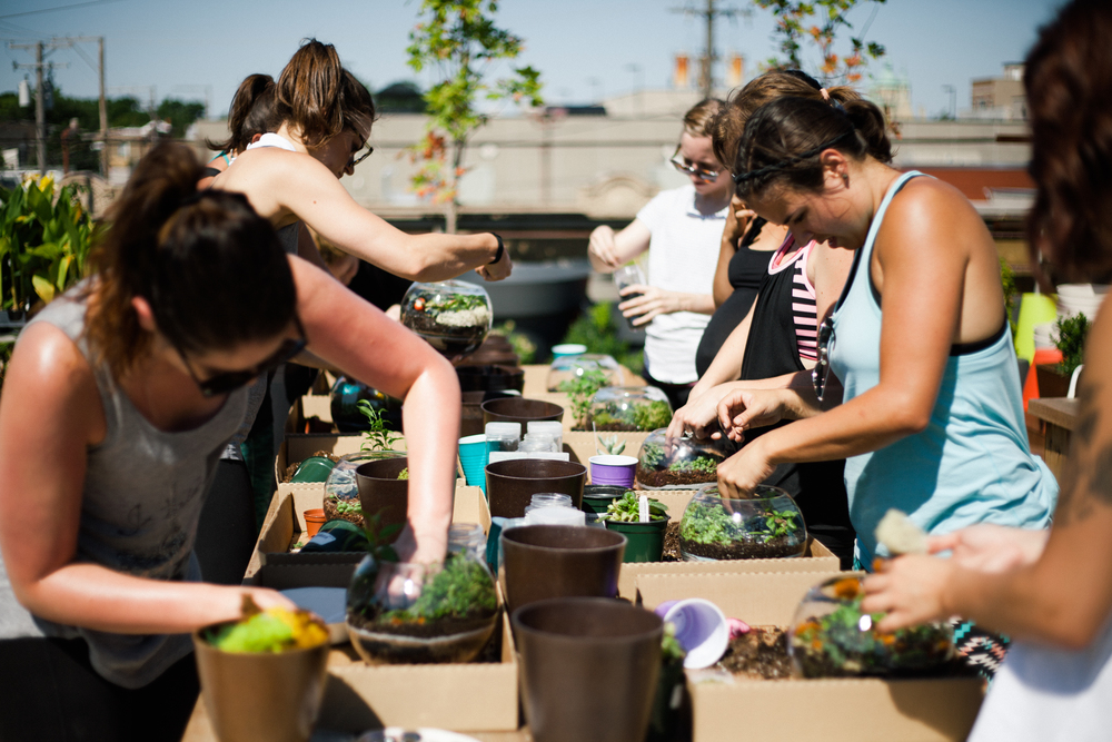 yoga-plus-sprout-home-chicago-rooftop-terrarium-building-workshop-58.jpg