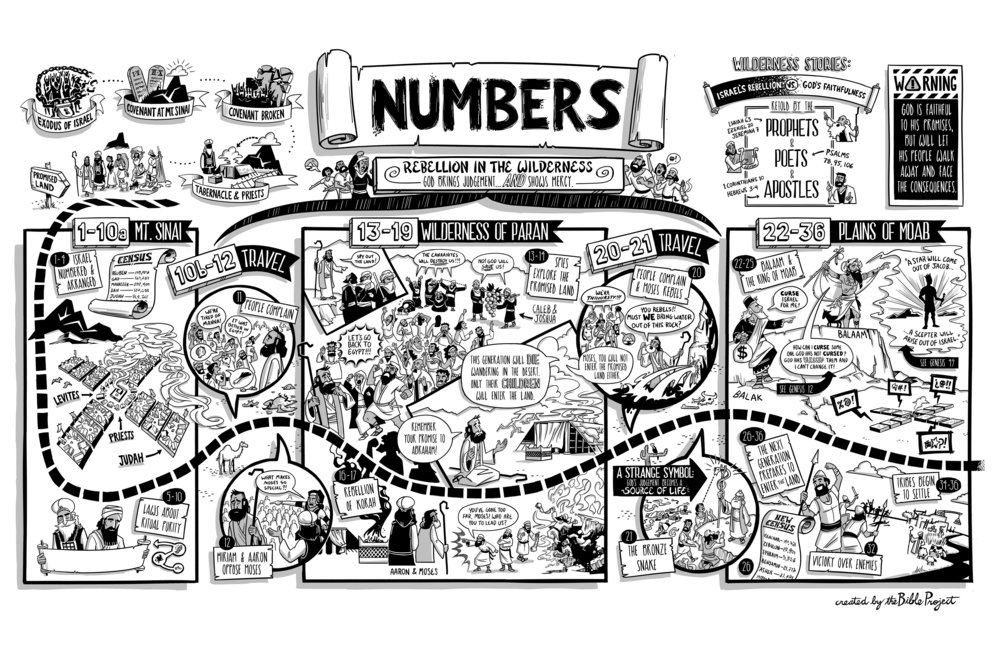 Overview of the Book of Numbers by Bible Project