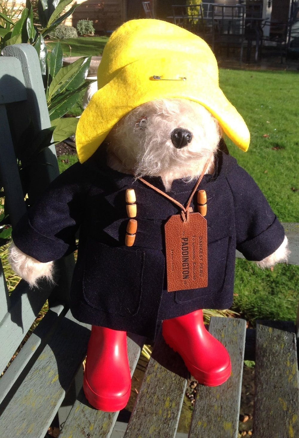 Paddington Bear reborn 11/11/2018