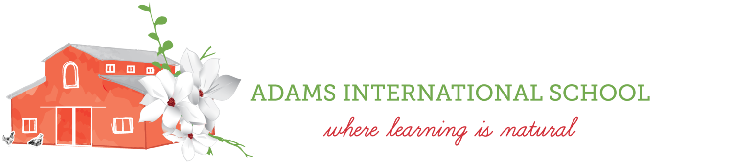 Adams International School