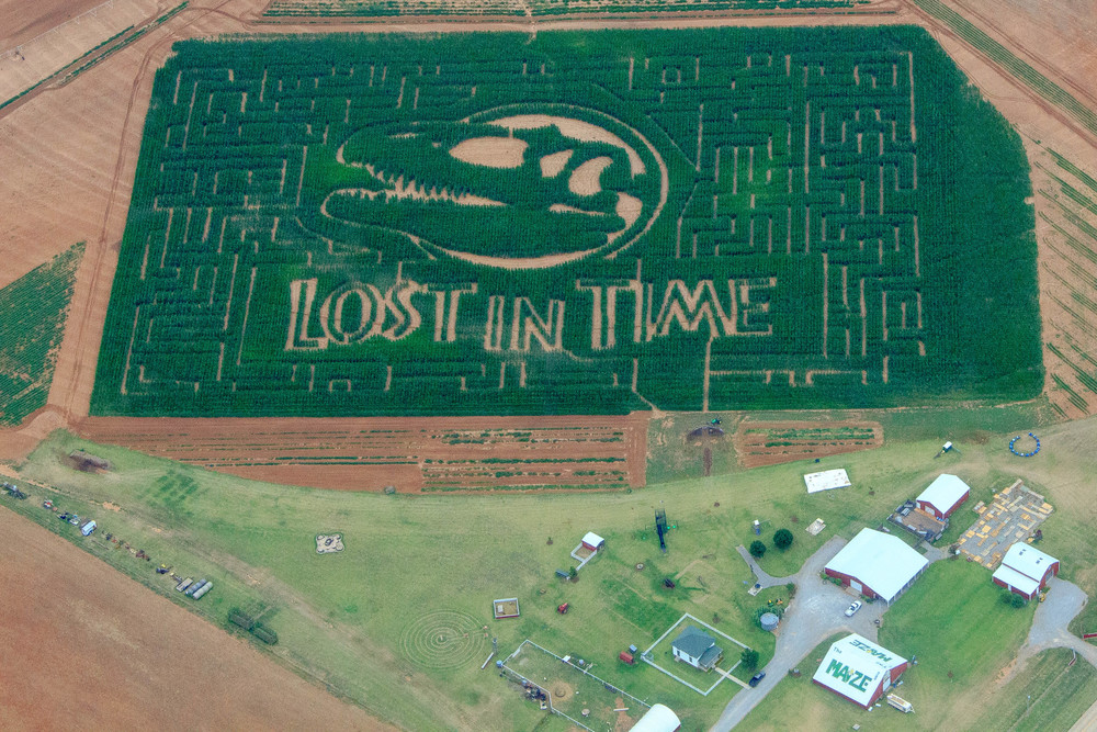 P Bar Farms Corn Maze.jpg