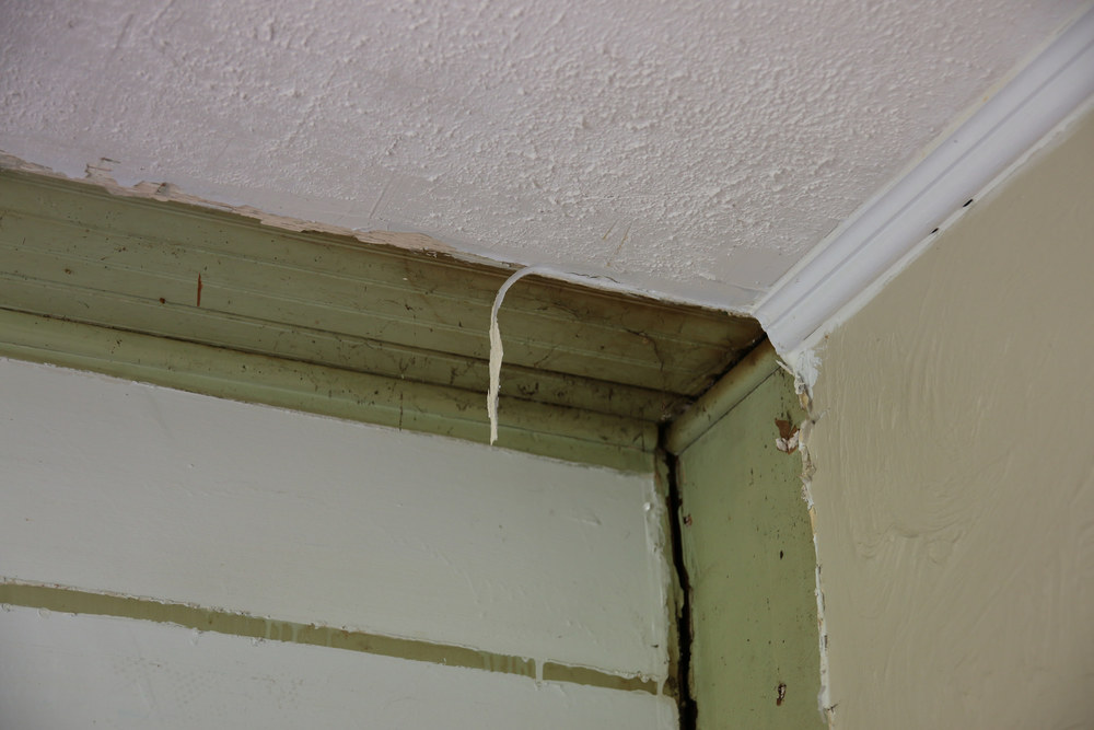 You can see part of the old beadboard ceiling of what was probably once an open back porch.