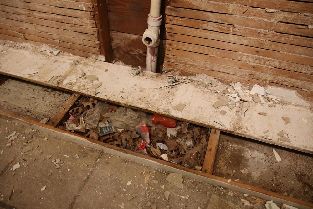 We found a lovely rat's nest under our kitchen sink!