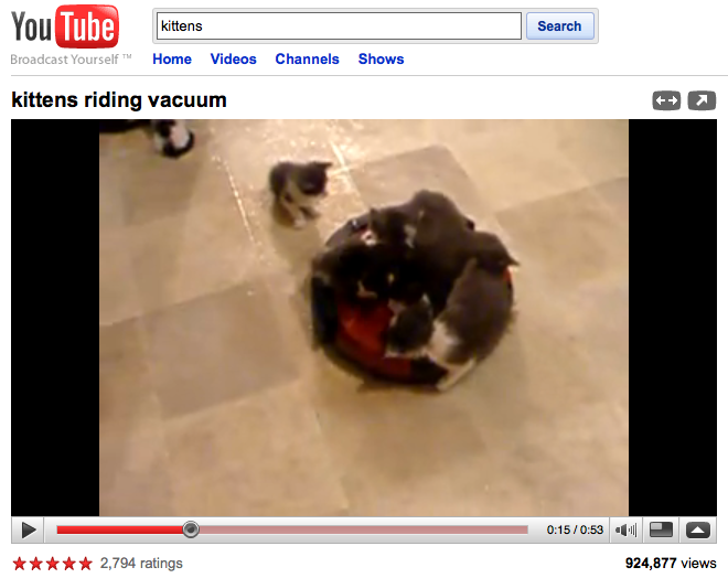 Kittens, riding a vacuum.