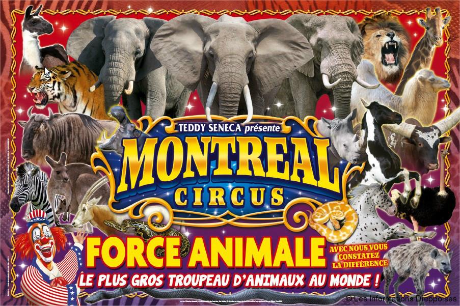 oM circus M.jpg