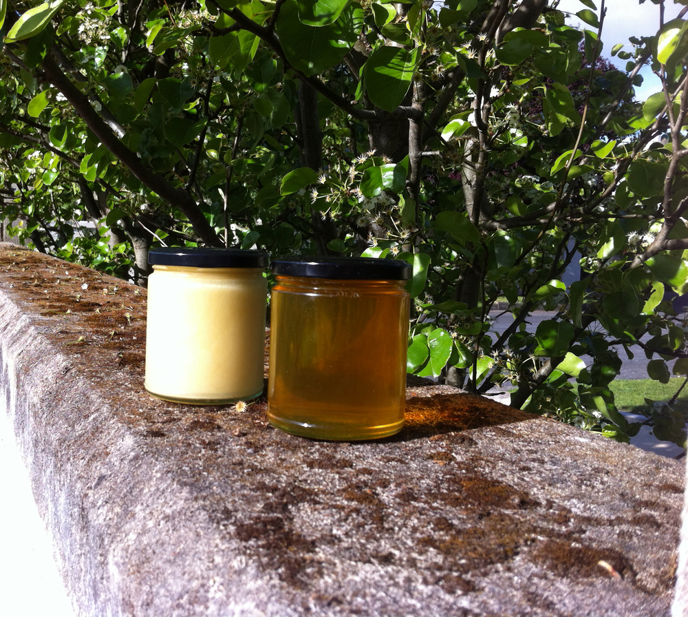 Creamed honey for your toast, liquid gold for everything else!