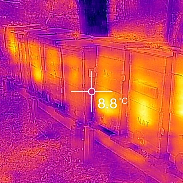 Hives on thermal.  Most of them are working two boxes and bringing in pollen.
