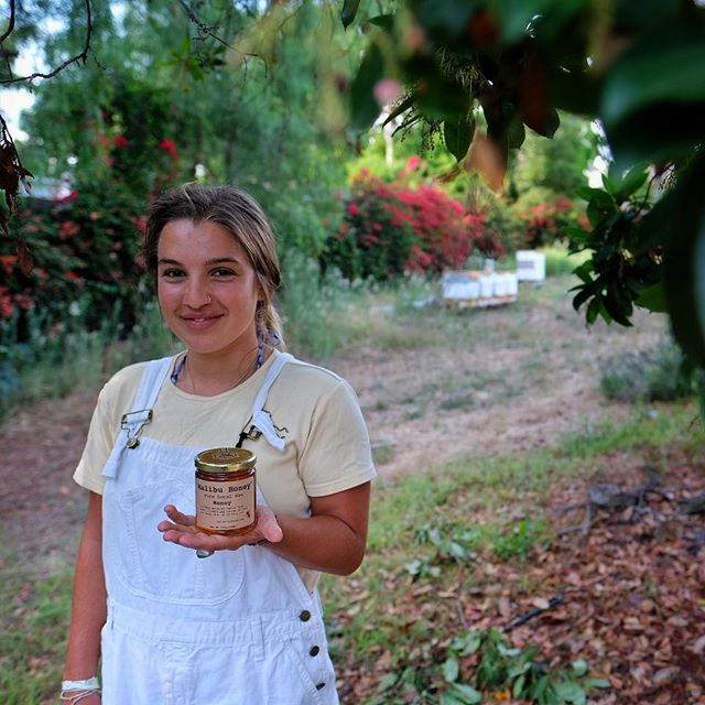 Ella has been helping out at Malibu Honey, labeling for the summer. She is a recent high school graduate and is interested in Organic agriculture- sold at #gelsonsmarkets #pcgreens #vintagegrocers #wholefoodsmarket #farmshopla -  #lafoodie #foodie #malibu #malibuhoney #localfoods #rawhoney #portraitphotography #bees #beekeeping