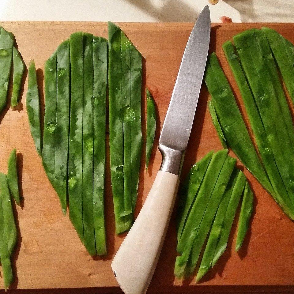Preparing cactus to eat
