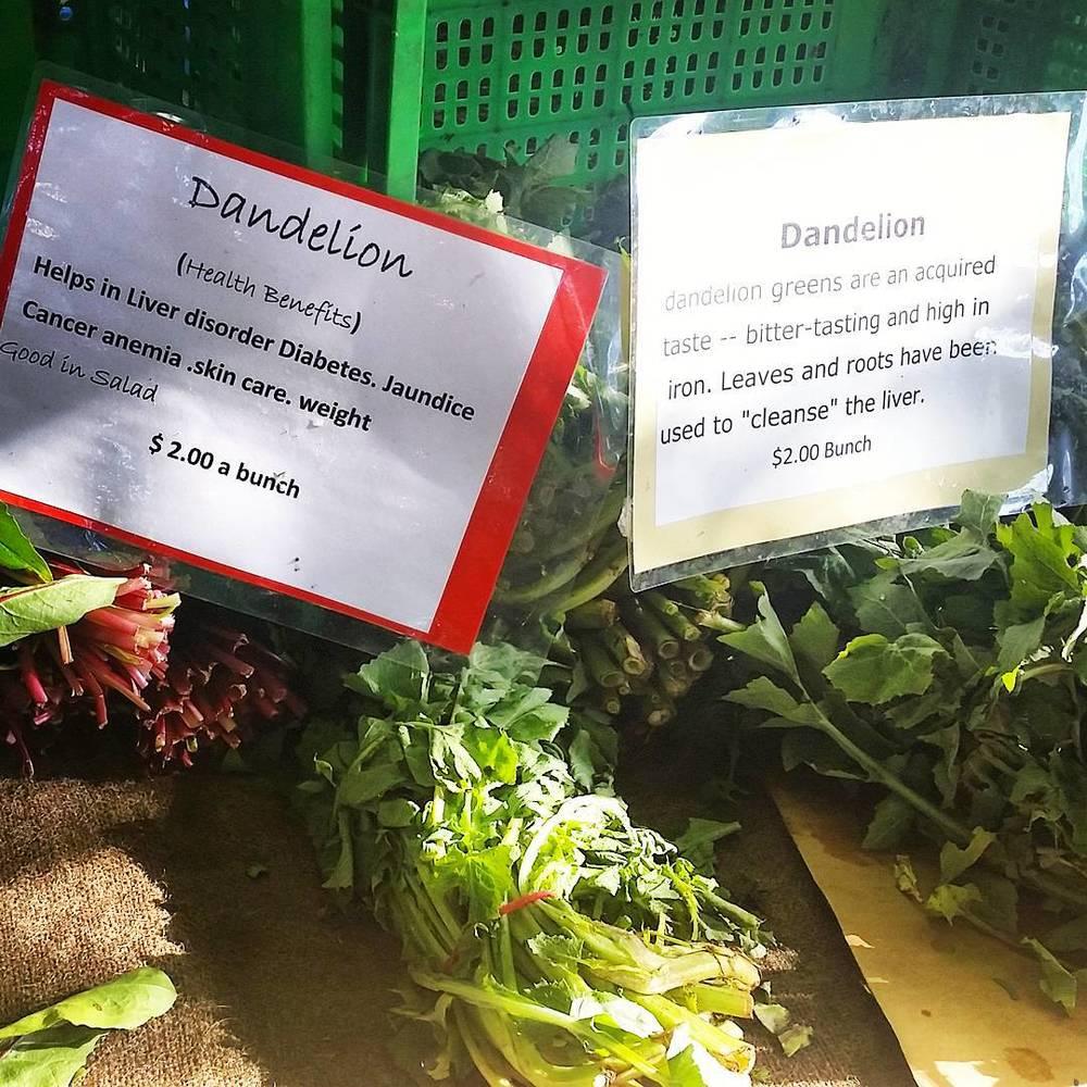 Dandelion Greens at Marrickville Market