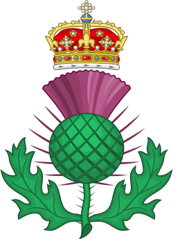 The thistle is the national floral emblem of Scotland