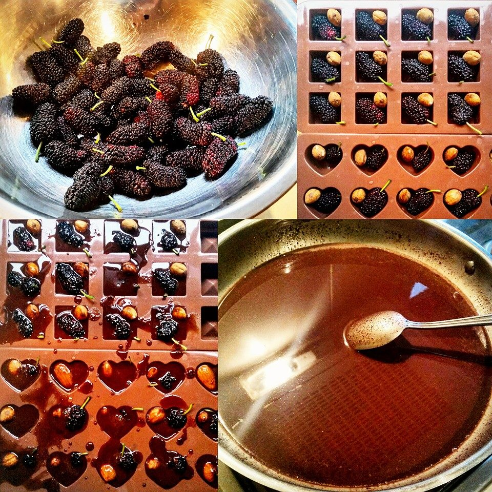 Healthy homemade fruit n nut chocolates